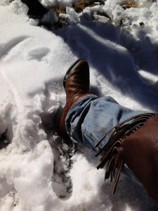 Wet Cowboy Boots